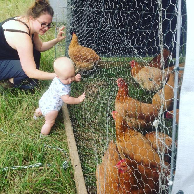 Baby and chickens