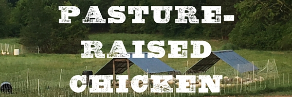 Pasture-Raised Chicken