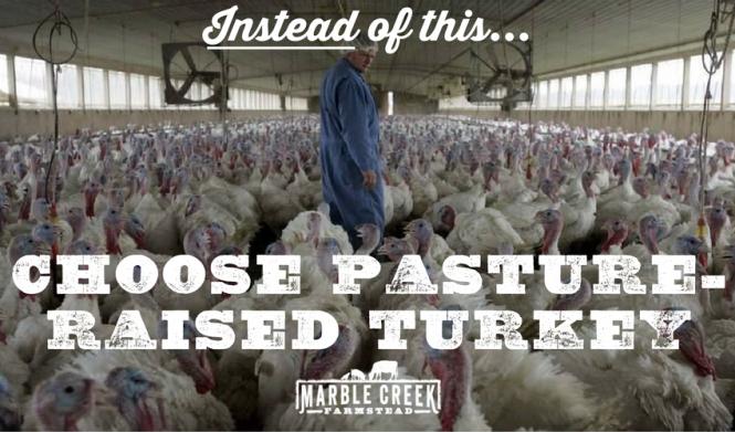 choose-pasture-raised-turkey